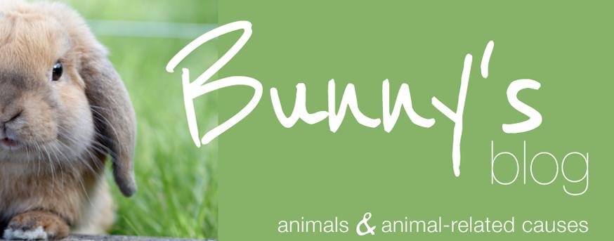 bunny's blog logo