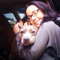 Check out the Celeb Pibble LOVE!!!