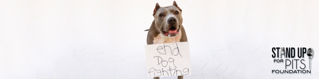 Dogfighting - Stand Up For Pits Foundation
