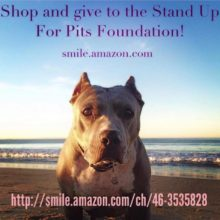 Amazon Smile for Stand Up For Pits Foundation!
