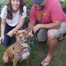 DONUT IS ADOPTED!!!