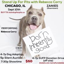 CHICAGO Stand Up For Pits happens SEPT 10th!!!