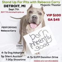DETROIT Stand Up For Pits happens SEPT 7TH!!!