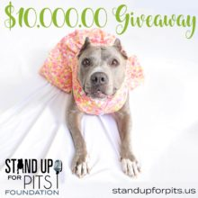 $10,000.00 ANGEL GRANT GIVEAWAY!!