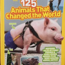 "ANGEL BECOMES NATIONAL GEOGRAPHIC ""125 Animals That Changed the World"""